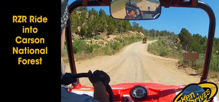 RZR Ride into Carson National Forest